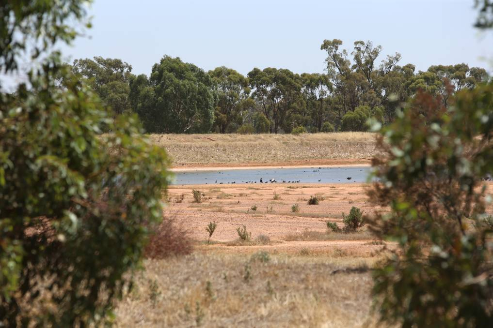 Bendigo mine fights Woodvale ponds rehabilitation bond increase