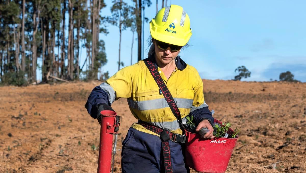 Alcoa is on track to achieve 1-1 ratio of mine rehabilitation