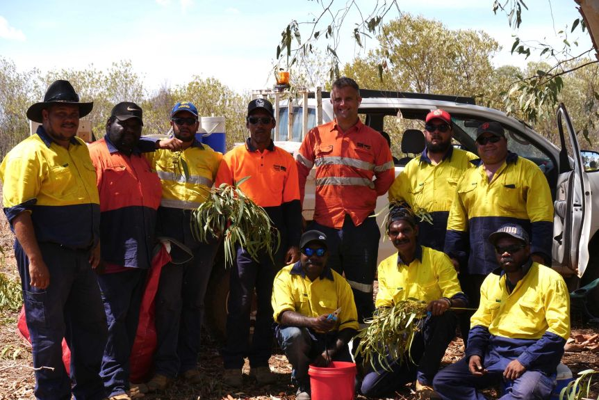 Traditional owners of Argyle mine help with the rehabilitation